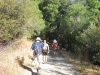 Heading up the trail through the shady oaks