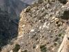 rock-climbers-trail
