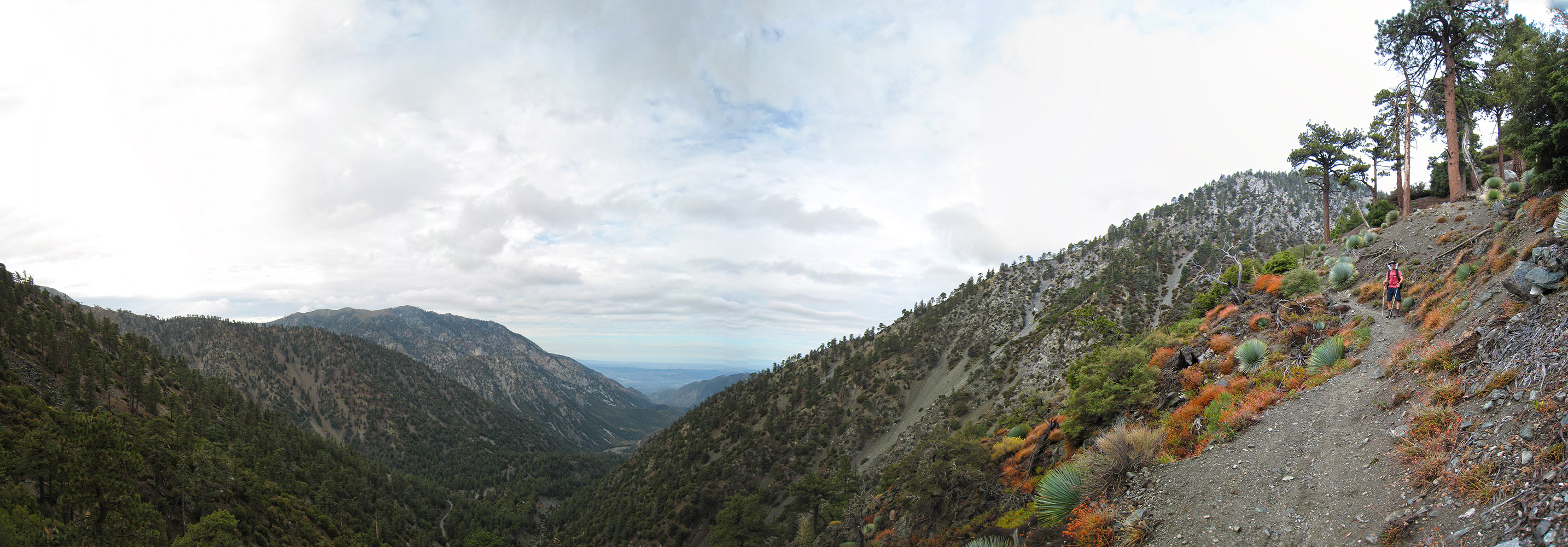 Mt Baldy Hiking Loop