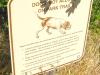 dog sign