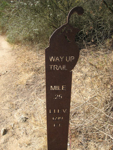 They have these nice little signs on the Way Up Trail giving you distance and elevation every .25 miles.