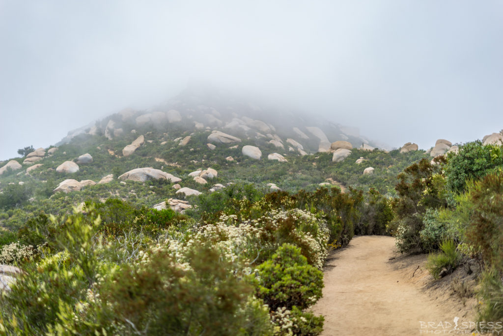 Foggy hike at 7am near the top of Mt Woodson