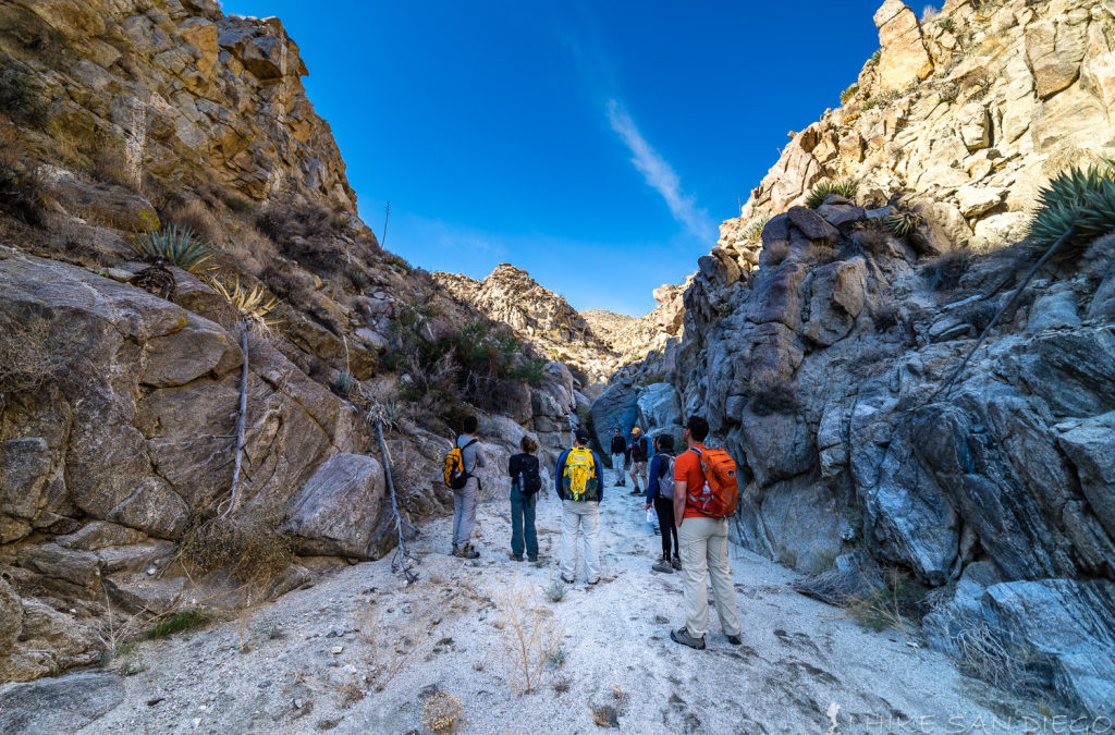 A good time of year to hike Anza Borrego: Harper Cabin and Dams Hike