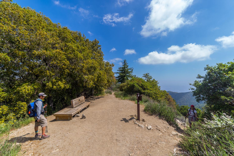 Mt Wilson via Chantry Flats - I Hike San go on